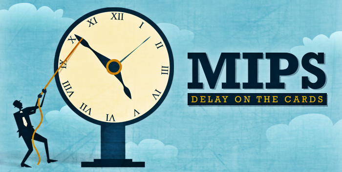 MIPS Delay on the Cards
